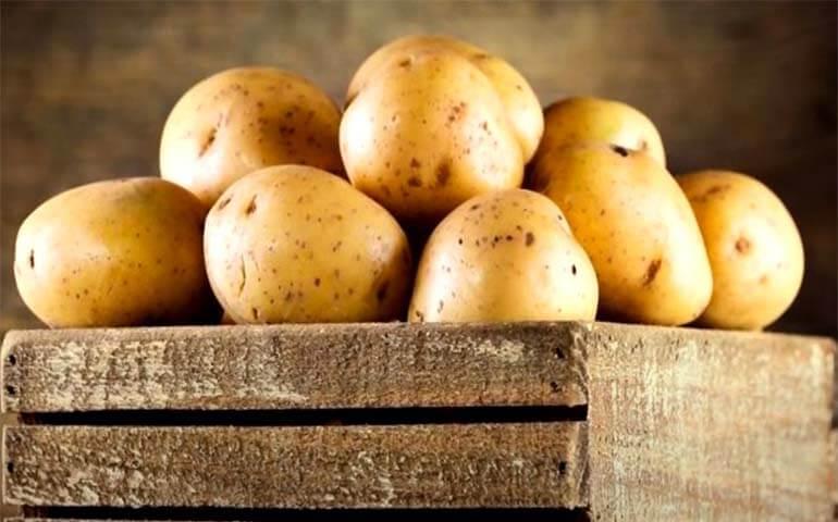 Kak-hranit-kartofel-v-domashnih-usloviyah-Kartofel