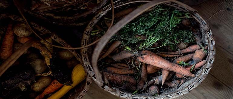 Kak-hranit-morkov-i-sveklu-Morkov-i-svekla