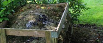kompost-kak-pravilno-sdelat-Kompost