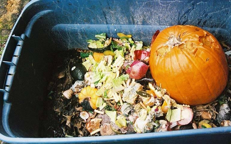 kompost-kak-pravilno-sdelat-Kompost-v-kontejnere