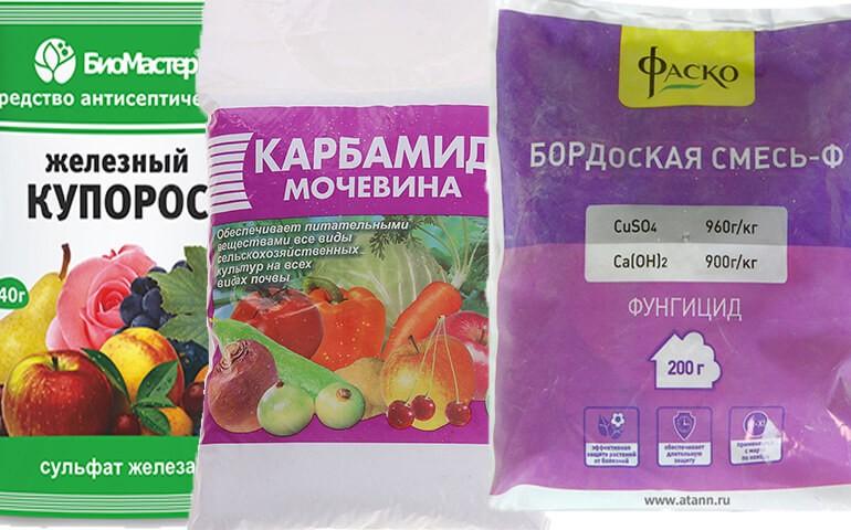 obrabotka-derevev-ot-vreditelej-osenyu-Bordosskaya-smes-ZHeleznyj-kuporos-Mochevina-Karbamid